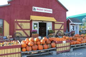 Pumpkin Patch Indiana County Pa by Barnyard Kingdom In Lancaster Pa Blogging Is A Trip