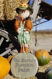 Pumpkin Patch Littleton Co by 10 Great Pumpkin Patches In Colorado