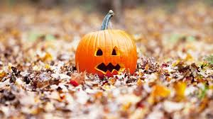 Maxwells Pumpkin Patch Amarillo Texas by Halloween Roundup 2017 Your Guide To Amarillo Area Holiday Fun