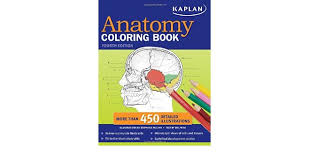 Buy Kaplan Anatomy Coloring Book Online At Low Prices In India