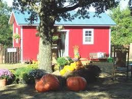 Carmichaels Pumpkin Patch Oklahoma by 61 Best Oklahoma U0027s Fabulous Fall Images On Pinterest Oklahoma