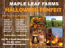 Pumpkin Picking South Nj by Halloween Flyer Maple Leaf Farms Nj