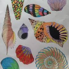 Colored Pencil Birthday Present For Her Daddy Coloringbook Shells Shell Colorama
