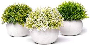 coradoma künstliche pflanzen im topf 3er set deko pflanze