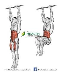 Captains Chair Leg Raise Bodybuilding by All About Abs U2013 66 Exercises In Pictures Bodybuilding