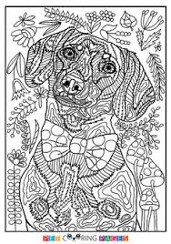 Free Printable Bernese Mountain Dog Coloring Page Available For Download Simple And Detailed Versions Adults Kids