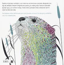 Agua Mágica Libro De Dibujo Animal De Zoológico Libro Para Colorear