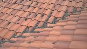 facts about tile roofing roofing by design inc nashville tn