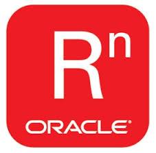 Oracle R Technologies Logo Icon
