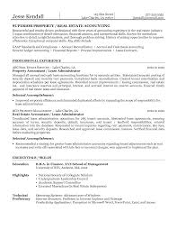 Superior Property Or Real Estate Accounting Resume Example