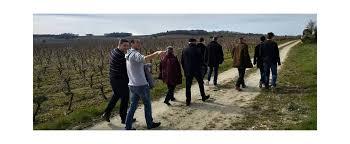 cours de cuisine loire atlantique visite guidée vignoble atelier dégustation vins près nantes loire