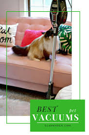 Roomba Hardwood Floors Pet Hair by Best 25 Best Rated Vacuum Ideas On Pinterest Best Rated Diy