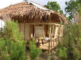 100 Simple Living Homes Hut Small Tiny Houses House