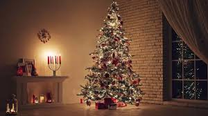 Christmas Tree Species Usa by Real Vs Fake Artificial Christmas Tree Types Facts U0026 Comparison