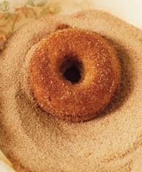 Pumpkin Spice Dunkin Donuts Vegan by Check Out Plain Cake Donut It U0027s So Easy To Make Donut Maker