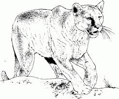 Black Panther Animal Coloring Pages 42763ef61e08 Bbcpc With The Awesome And Interesting Regard To Encourage
