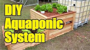 Backyard Aquaponics: DIY AQUAPONICS System To Farm Fish With ... Backyard Aquaponic Gardening System Benefits Of Backyard Greenhouse Aquaponics And Yard Design For Village Systems Aquaponics Twotiered Back Gardening Fish Farming System Food Growing Freestylefarm Pond Outdoor Fniture Design Ideas Diy Pond Images On Wonderful Endless Reviews Testimonial Collage Pics Commercial Farm Most Likely The Effective Sharingame How To