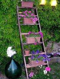 Creative IdeaYard Decoration With Soft Blue Old Ladder Planter Garden For Yellow Flowers Beautiful