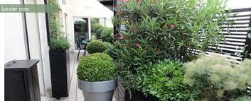 fleurs en pots pour balcon et terrasse my jardin my