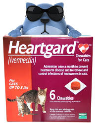 heartgard for cats heartgard chewables for cats no prescription tatochip