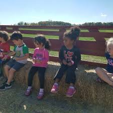 Gust Brothers Pumpkin Farm by Sylvania Ymca And Jcc Posts Facebook
