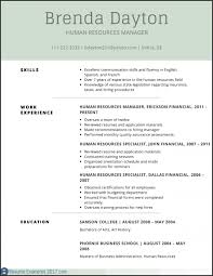 Resume Templates Example For Skills On A Resumes Robertottni Professional Template 2017