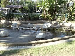 100 Holmby FileDriedup Pond In Park Hills Los Angeles