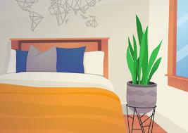 pflanzen im schlafzimmer fördernd oder schädlich