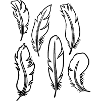 Six Feathers  Coloring Pages  Surfnetkids