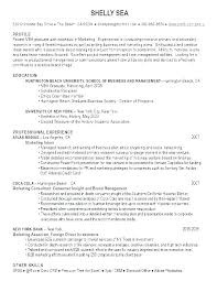Profile Resume Recent Graduate Example Of For Professional Sample Resumes Examp
