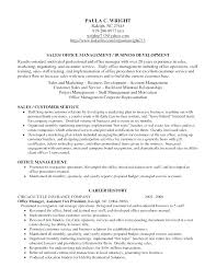 Resume Examples Professional Profile Templates Sample For On A Statement Customer Service