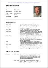 Resume Instance English Example