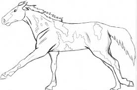 Paint Horse Coloring Pages 4 Realistic Wolf