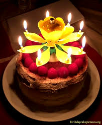 Fancy Chocolate Birthday Cake