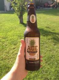 Ace Pumpkin Cider Abv by The Bierlady Just One Gals Opinion U2026 Beer Whats Good Where Can