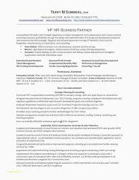 Senior Sales Manager Resume Sample Awesome Objective Roddyschrock For Management