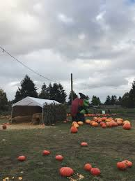 Pumpkin Patch Vancouver Washington by Halloween 2016 Decor U0026 Festivities U2014 Insta Elyse