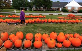 Columbus Georgia Pumpkin Patch by Summerville United Methodist Is Prepared For Pumpkin Season
