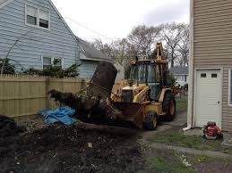 Stump Removal Service Hamilton Square New Jersey - We Offer ... Roll Off Container Rental Service In Passaic County New Jersey Nj Food Truck Best Resource Cargo Van Nj Moving Trucks Sprinter Morristown Techbrainiac Isuzu Commercial Pa Bergeys Design Car Wraps Graphic 3d Penske Reviews Uhaul Elegant How As A Child Can Affect You Deluxe Intertional Midatlantic Centre River Rent Wreck Deptford Home Facebook Lucky
