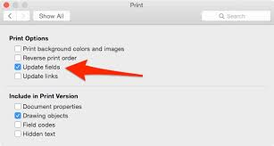 MS Word Print Options From Of Mac 2016