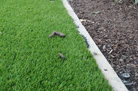 Heavenly Greens Synthetic Turf: Making Life With Dogs That Much ... Keep Odors Locked Inside With The Poovault Best 25 Dog Run Yard Ideas On Pinterest Backyard Potty Wichita Kansas Pooper Scooper Dog Poop Cleanup Pet Pooper Scoop Scooper Service Waste Removal Doodycalls Doodyfree Removalpooper 718dogpoop Outdoor Poop Garbage Can This Is Where The Goes 10 Tips To Remove Angies List Top Scoopers Reviewed In 2017 Backyards Wonderful 1000 Ideas About Backyard Basketball Court Station Bag Dispenser I Could Totally Diy This For A