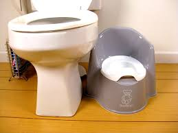 Baby Bjorn Potty Chair In Gray | Potty Training Concepts Country Home Bath And Cosy Armchair In Bathroom Stock Photo Toilet Russcarnahancom Bewitch Pictures Chair Height Bowl Delight Brown If You Want To Go For The Royal Flush Then Maybe This Is Armchairs Vintage Made Wooden Metal 114963907 Porta Potti Qube 365 Chemical Portable Nrs Healthcare Allmodern Custom Upholstery Warner Big Reviews Wayfair Mab Poltroncina Blog Padded Vieffetrade Shower Depot Seat Lowes Vanity With Rare Modern Morris With Adjustable Back By Edward Wormley Definite Foam Moldcast Model Mobiliario Proceso De Diseo