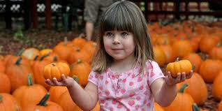 Pumpkin Patch Indiana County Pa by 30 Perfect Pumpkin Patches In Indiana You Need To Know About