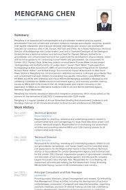 Technical Director Resume Samples