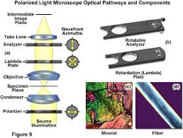 The Science behind Science Pants Polarized Light Microscopy The