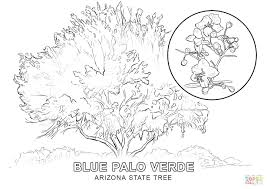 Coloring Page Tree Without Leaves Trunk Click State Pages View Printable Of Red Eyed Frog