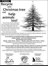 Christmas Tree Shop North Attleboro by Christmas Trees Ad Christmas Lights Decoration