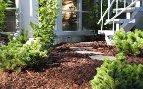 Why You Need to Mulch Your Summer Garden