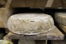 les fromages à pâtes pressées non cuites