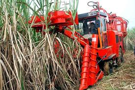 Eight CCA5 Sugarcane Harvesters A Model Designed By Specialists From China And Cuba Have Reportedly Successfully Completed Three Years Of Work Following